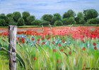 Frühling, Mohn, Acrylmalerei, Landschaft