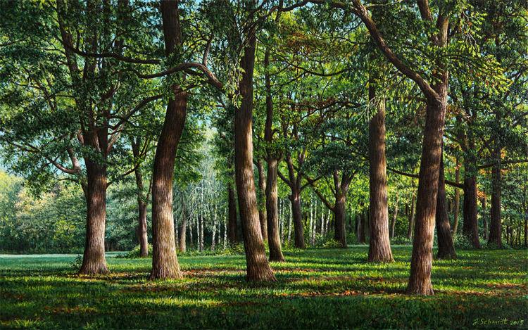 Eichen, Wald, Ölmalerei, Ölfarben, Gras, Sommer