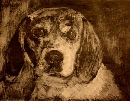 Lasurtechnik, Beagle, Skizze, Weißhöhung, Hund, Malerei