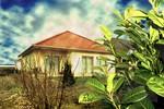 Haus, Himmel, Fotografie, Garten