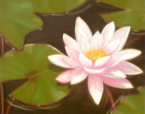 Blumen, Seerosen, Malerei