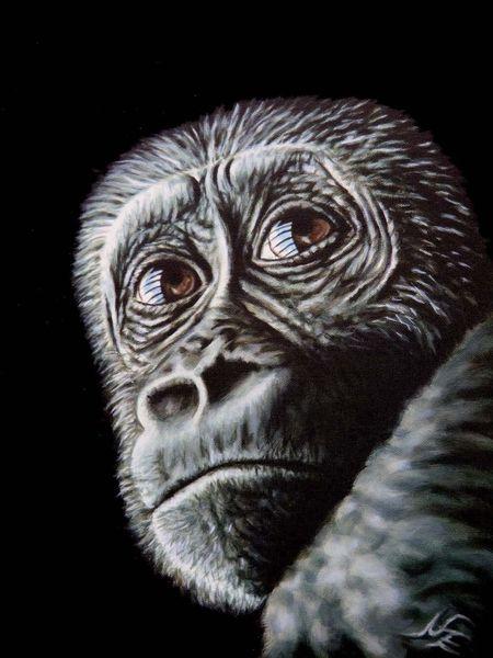 Acrylmalerei, Affe, Augen, Realismus, Schwarz, Menschenaffen