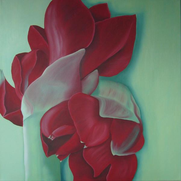 Rot, Blumen, Amaryllis, Blüte, Malerei, Pflanzen