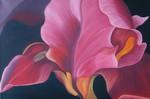 Blumen, Iris, Blüte, Malerei