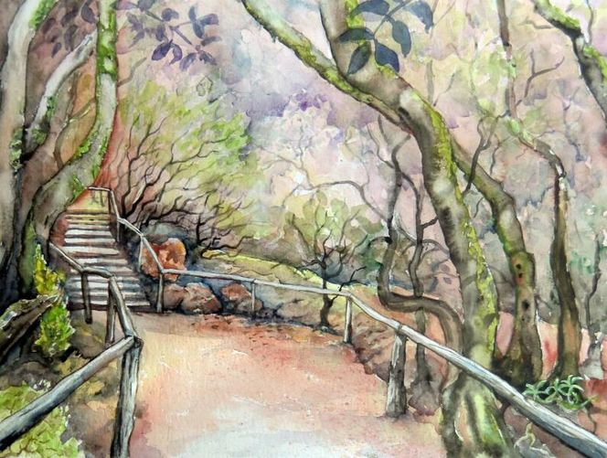 Aquarellmalerei, Wald, La gumera, Baum, Lorbeerbaumwald, Landschaft