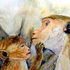 Tiere, Tierportrait, Affe, Liebe