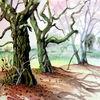 Baum, Herbst, Landschaft, Aquarell