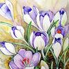 Blumen, Krokus, Aquarell