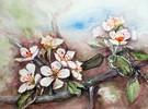 Blüte, Aquarellmalerei, Apfelblüten, Aquarell