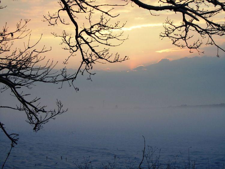 Neujahr, Feldrand, Jahreswechsel, Perspektive, Landschaft, Abendhimmel
