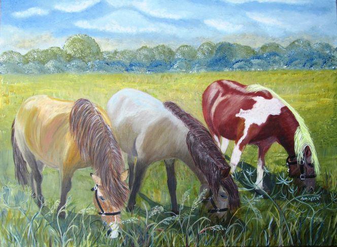 Pferde, Baum, Wolken, Himmel, Friese, Busch