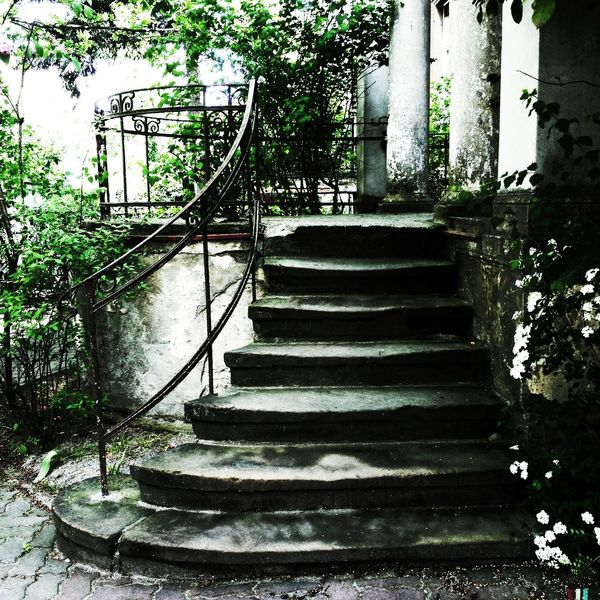 Stadt, Fotografie, Villa, Eden