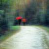Digital, Stimmung, Regen, Springtime