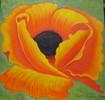 Mohn, Blumen, Gelb, Malerei
