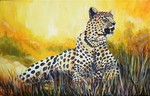 Gepard, Afrika, Tiere, Landschaft