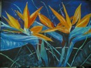 Strelzilien, Flora, Paradiesblume, Malerei