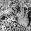 Zeichnung, Schuhe zeichnen, Gänseblümchen, Kinderschuhe