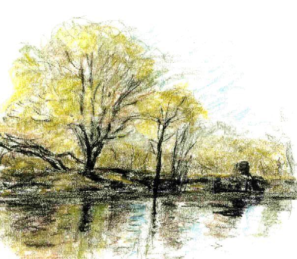 Flussufer, Baum, Zeichnungen, Ufer
