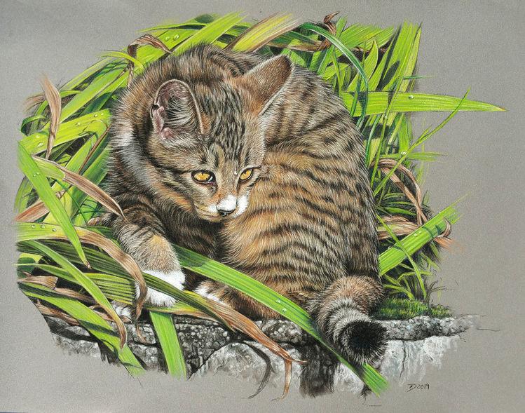 Tiger, Gras, Katze, Garten, Pastellmalerei, Malerei