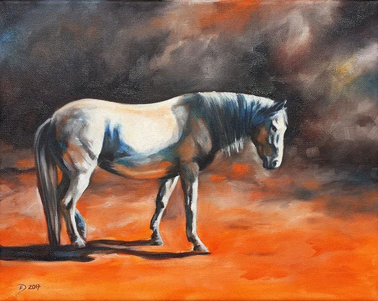 Pferde, Pony, Schimmel, Malerei, Orange