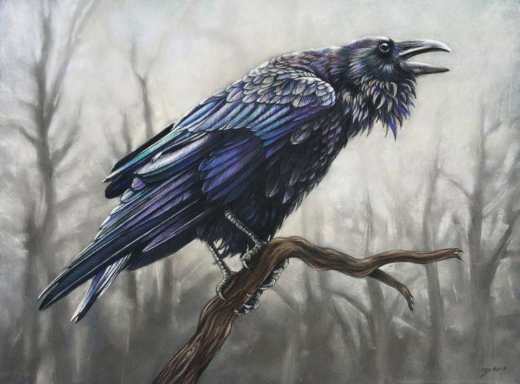 Rabe, Pastellmalerei, Vogel, Herbst, Krähe, November