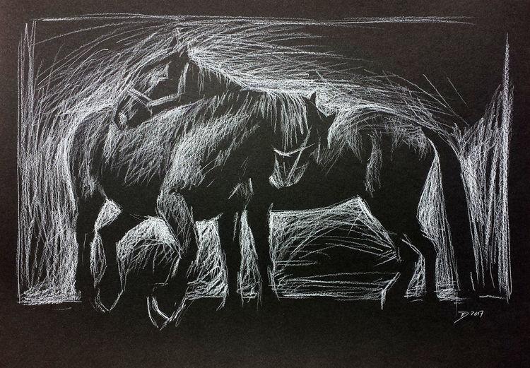 Tiere, Pferde, Kreide, Pferdezeichnung, Zeichnungen