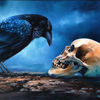 Momento mori, Krähe, Blau, Schädel