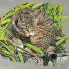 Gras, Katze, Garten, Pastellmalerei