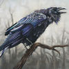 Rabe, Krähe, Pastellmalerei, Vogel