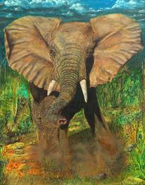Wut, Steppe, Tiere, Elefant