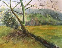 Baum, Aquarellmalerei, Weide, Malters