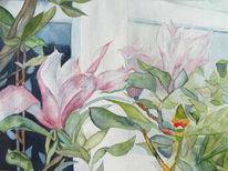 Aquarellmalerei, Frühling, Blüte, Magnolien