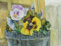 Blüte, Frühling, Stiefmütterchen, Aquarellmalerei