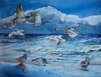 Ente, Ostsee, Aquarellmalerei, Möwen aquarell