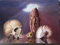 Kopf, Schädel, Muschel, Gothik