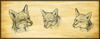 Tiere, Fuchs, Zeichnungen