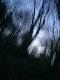 Wesen, Licht, Spät, Verwandlung