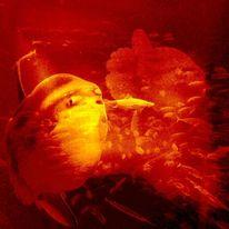 Hai, Zwei mondfische, Fisch, Digitale kunst