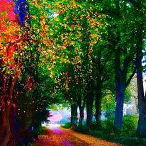 Allee, Baum, Leuchtfarbe, Digitale kunst
