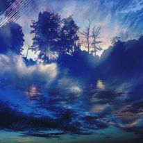 Baum, Welle, Abend, Wasser
