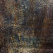 Wald, Rehbock, Linie, Mischtechnik