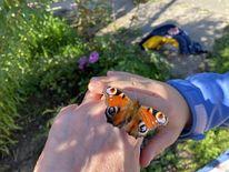 Schmetterling, Hände, Kinderhand, Erwachsenenhand