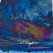 Himmel, Wolkenbaum, Landschaft, Mischtechnik
