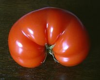 Poo, Früchte, Tomate, Gesäß