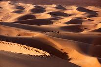 Nomaden, Sahara, Marokko, Tuareg