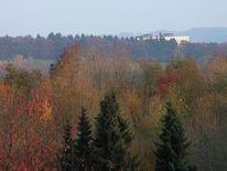 Dunst, Herbst, Fotografie