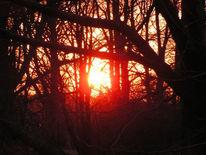 Sonne, Gehen, Fotografie,