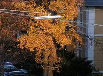Laterne, Licht, Herbst, Sonne