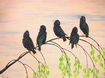 Vogel, Starren, Tiere, Malerei