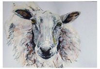 Schaf, Malerei, Figural, Tiere